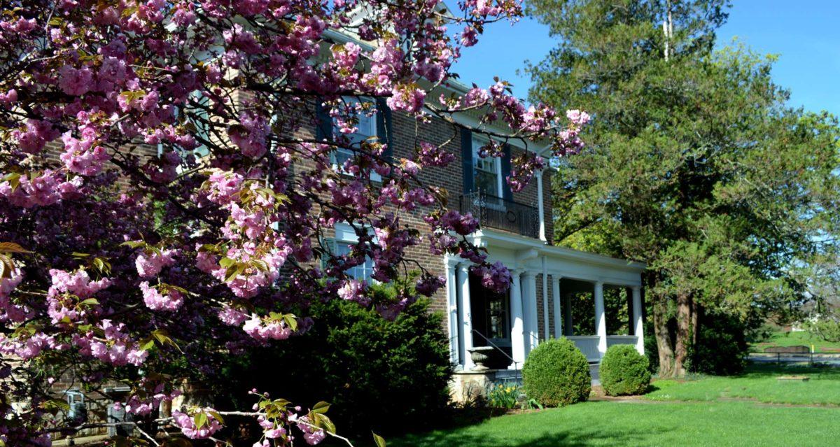 Thornrose House at Gypsy Hill Staunton